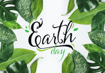 Top 5 Products for Sustainable Shopping This Earth Day