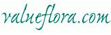Valueflora.com - Flower Bouquets Under £15